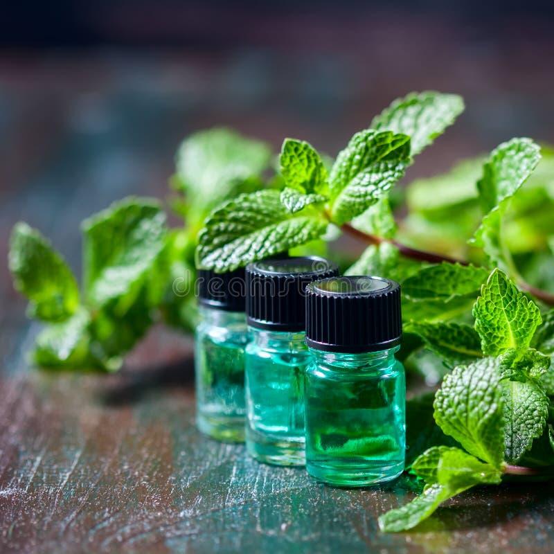 Istotny olej miętówka w małych butelkach, świeża zieleni mennica na drewnianym tle fotografia royalty free
