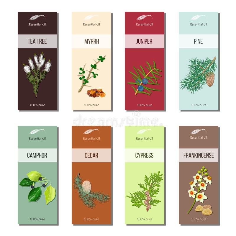 Istotny olej przylepia etykietkę kolekcję Herbaciany drzewo, mira, jałowiec, sosna, cynamon, kamfora, cedr, cyprys, frankincense royalty ilustracja