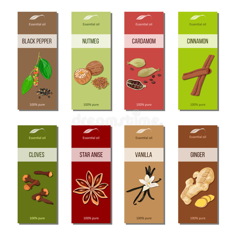 Istotny olej przylepia etykietkę kolekcję Nutmeg, kardamon, gwiazdowy anyż, Cloves, cynamon, imbir, wanilia, czarny pieprz ilustracja wektor