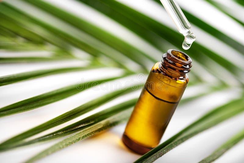 Istotny olej spada od szklanego wkraplacza obraz royalty free