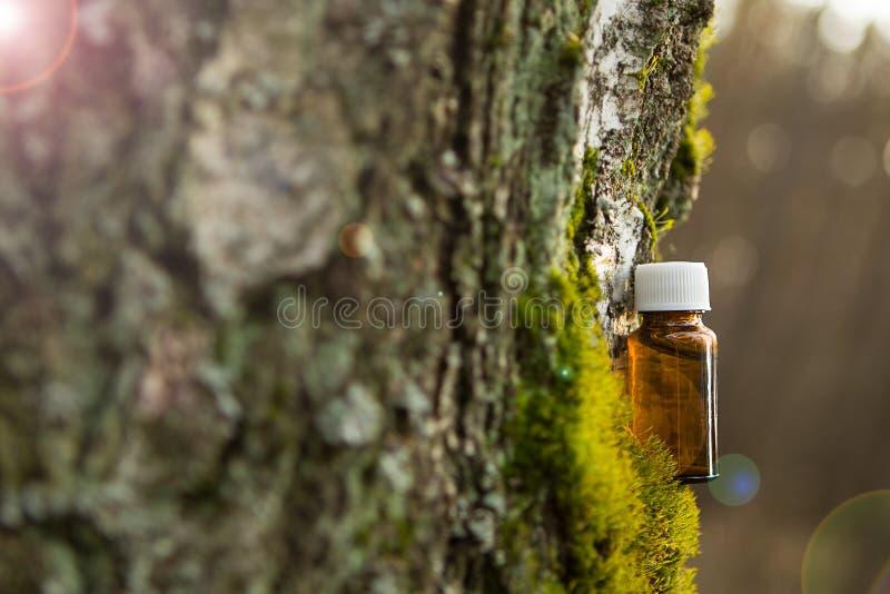 Istotny olej w małej brąz butelce zdjęcia stock