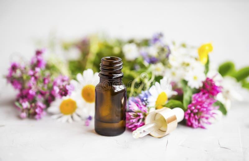 Istotny olej z leczniczymi roślinami i kwiatami fotografia royalty free