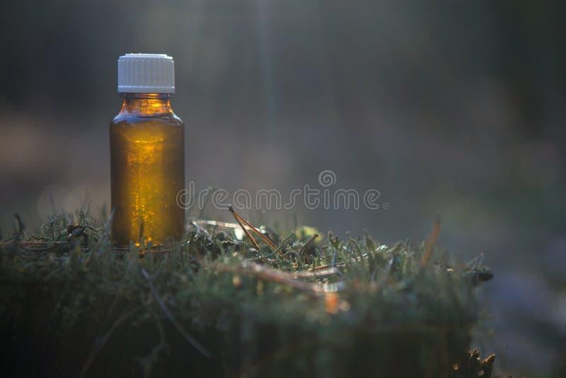 Istotny olej - Zielarska terapia, butelka obrazy stock