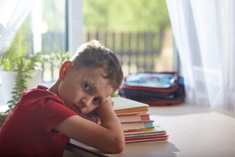 Istruzione domestica, facente compito il ragazzo indicare stancamente su una pila di libri e di manuali studente del ragazzino ch immagini stock libere da diritti