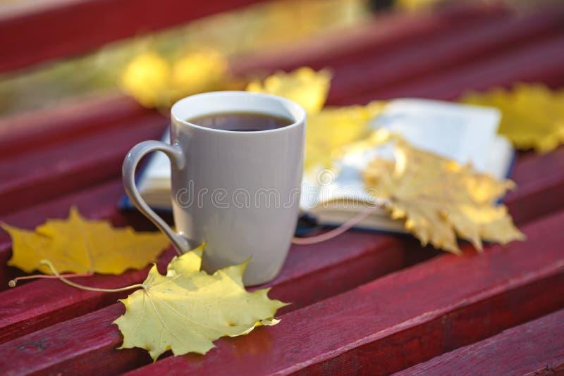 Istruzione e concetto della letteratura - tazza di caffè e del libro aperto sulla b fotografie stock