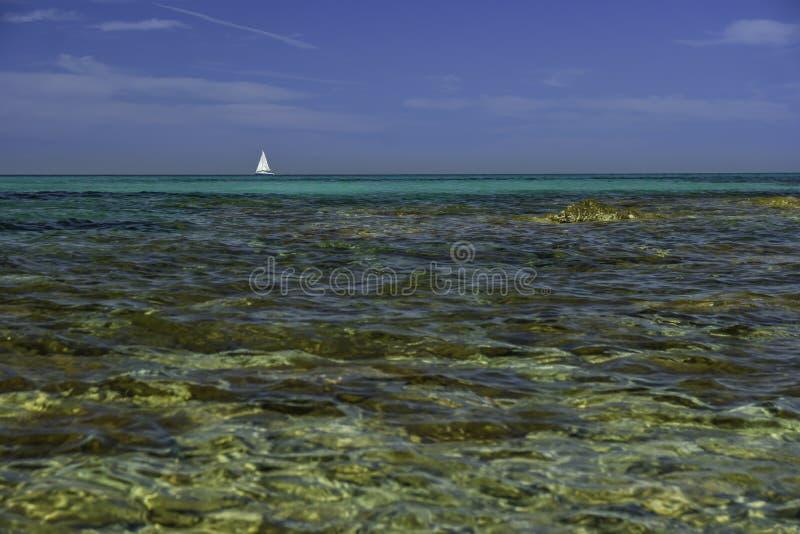 Isuledda海滩,假丝酵母风帆,圣特奥多罗,撒丁岛,意大利 免版税库存照片