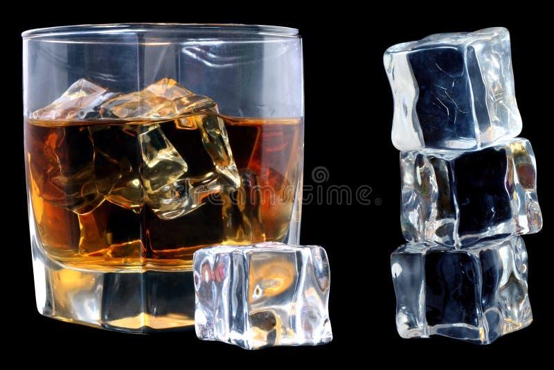 iswhiskey fotografering för bildbyråer