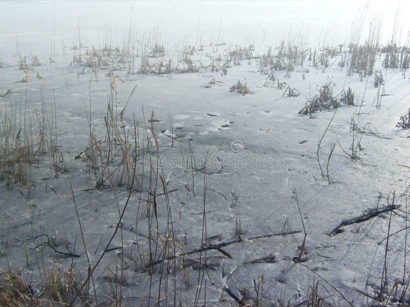 Isyttersida av sjön arkivbild