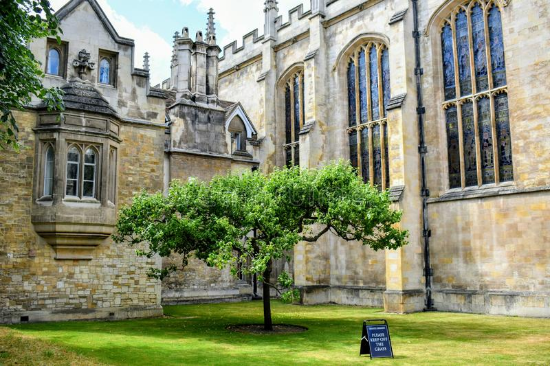 Trinity college, Cambridge @ UK. It is a constituent college of the University of Cambridge in UK. Alumni include Isaac Newton, S Ramanujan and so stock images