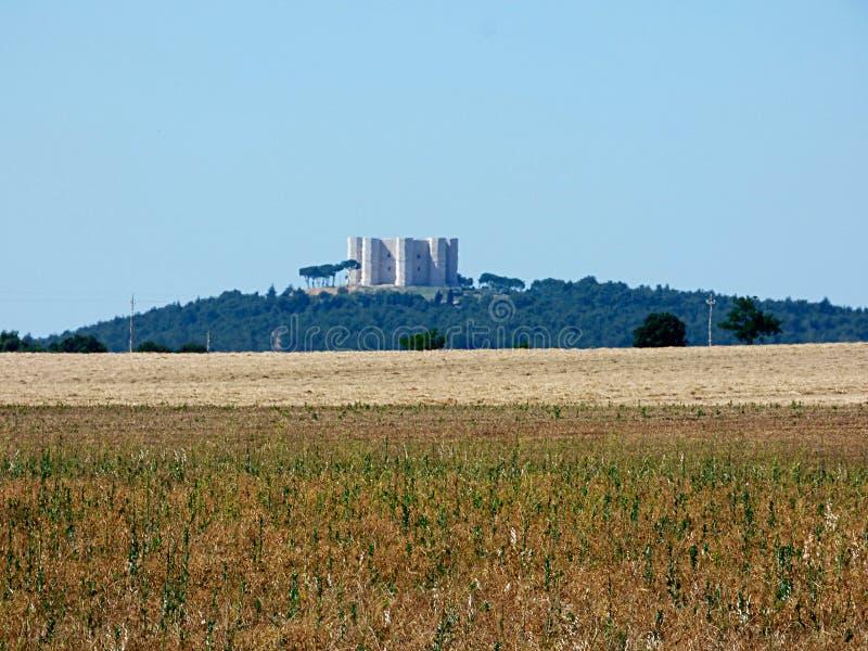 Itália Puglia, vista do campo do murge, fotografia de stock