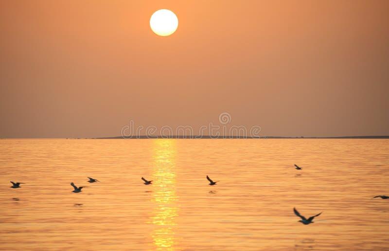 Itália, Sardegna, o mar imagens de stock royalty free