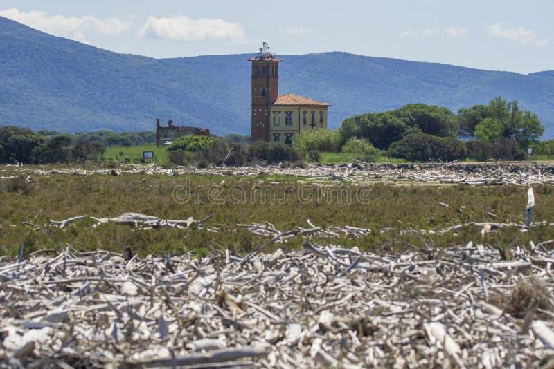 Itália Toscânia Maremma, na praia para Bocca di Ombrone, a boca do rio e da casa dos guardiães da floresta imagens de stock