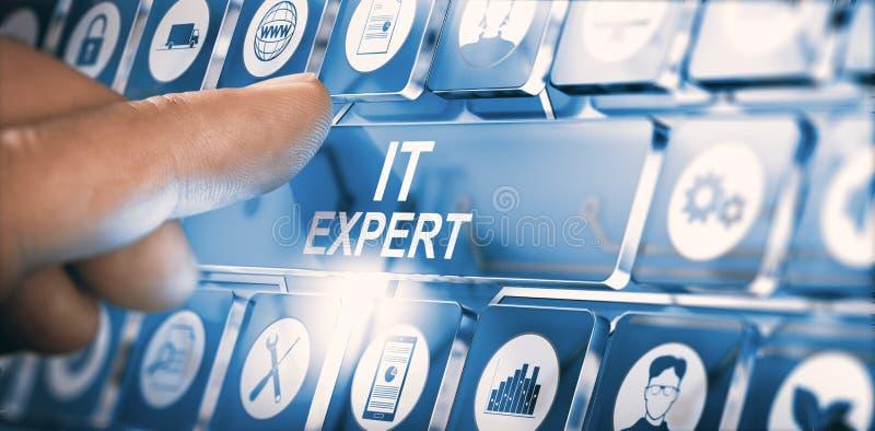 IT专家、信息技术忠告或者服务 向量例证