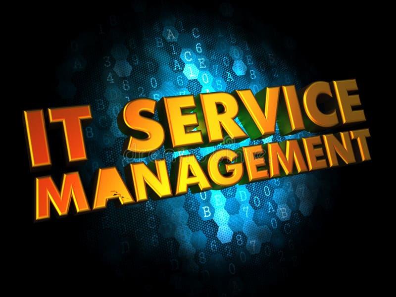 IT为在数字式背景的管理服务 向量例证