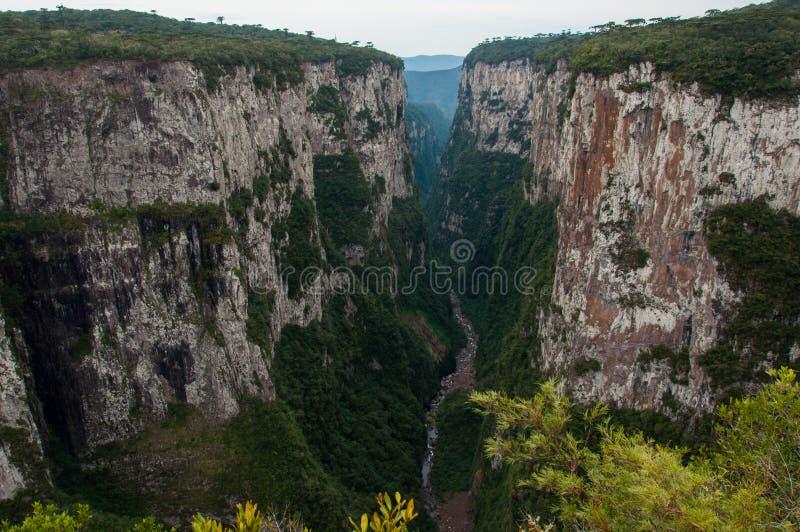Itaimbezinho Uroczyści jary w rio grande robią Sul, Brazylia obrazy royalty free