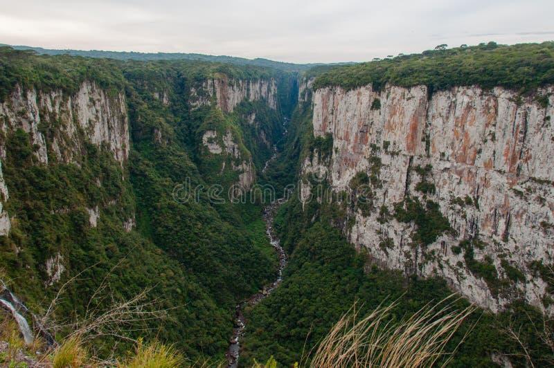 Itaimbezinho Uroczyści jary w rio grande robią Sul, Brazylia obraz royalty free