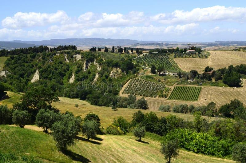 Italië, Toscanië, landbouwlandschap stock afbeelding