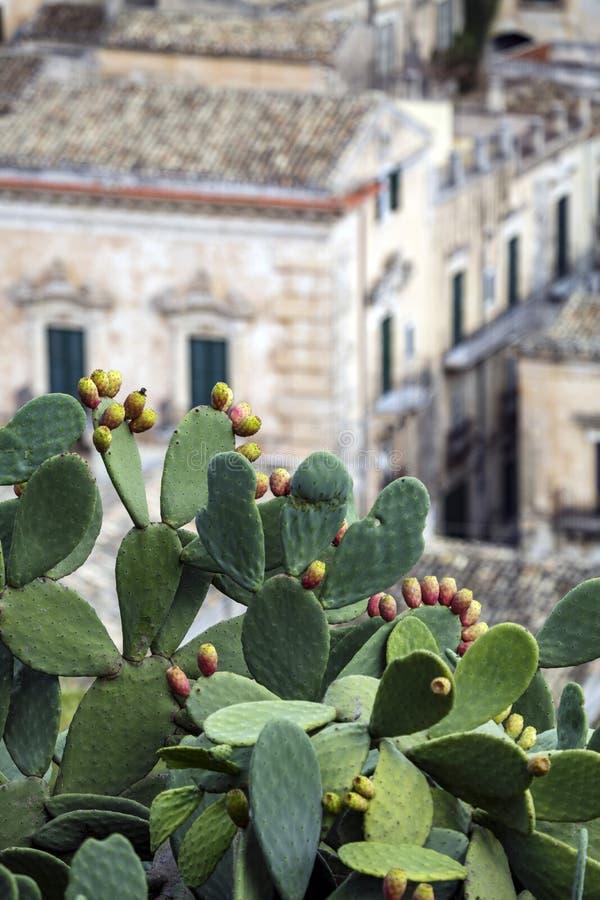 Italia - Sicely - pizcas imagenes de archivo