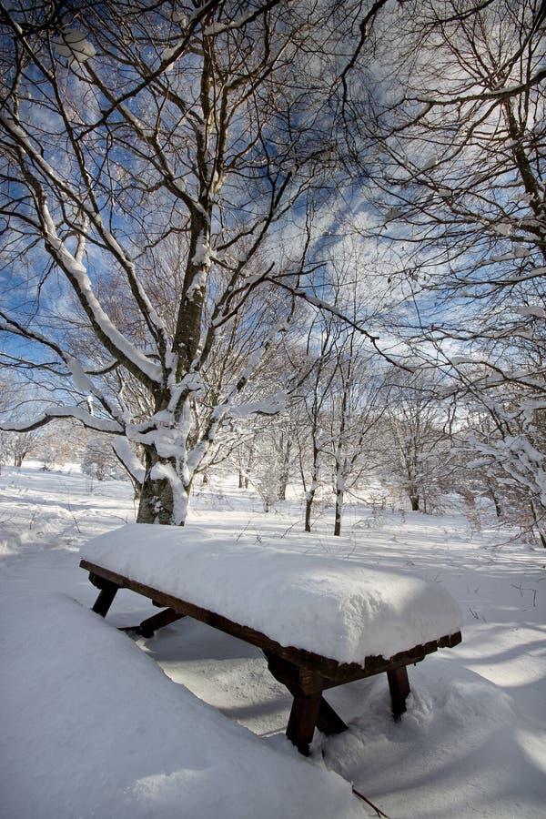 Italia, Toscana, parque nacional de los bosques de Casentino foto de archivo