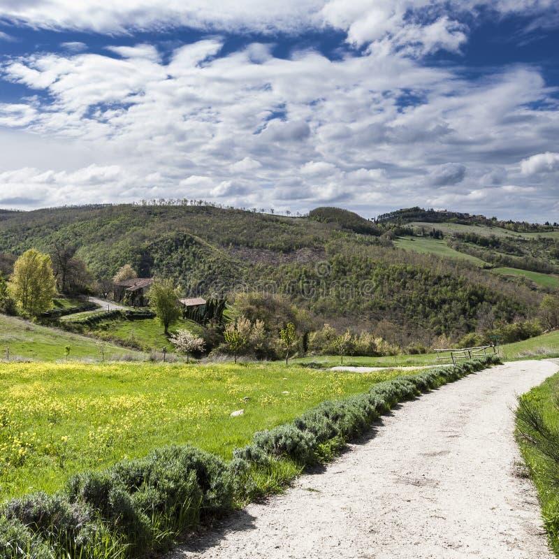 Italiaans landschap met landweggen stock afbeeldingen