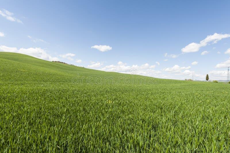 Italiaans landschap met weiden stock foto