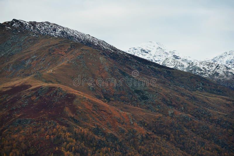 Italiaanse Alpen stock foto's