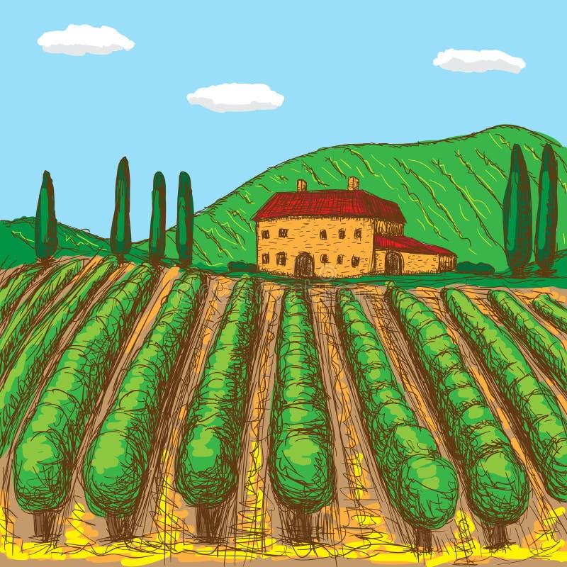 Italiaanse die wijngaarden met een aanraking van kleur worden geschilderd Vector illustratie stock illustratie