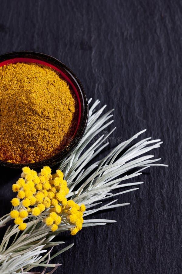Italiaanse Eeuwig, Helichrysum-italicum, kerrieinstallatie royalty-vrije stock foto's