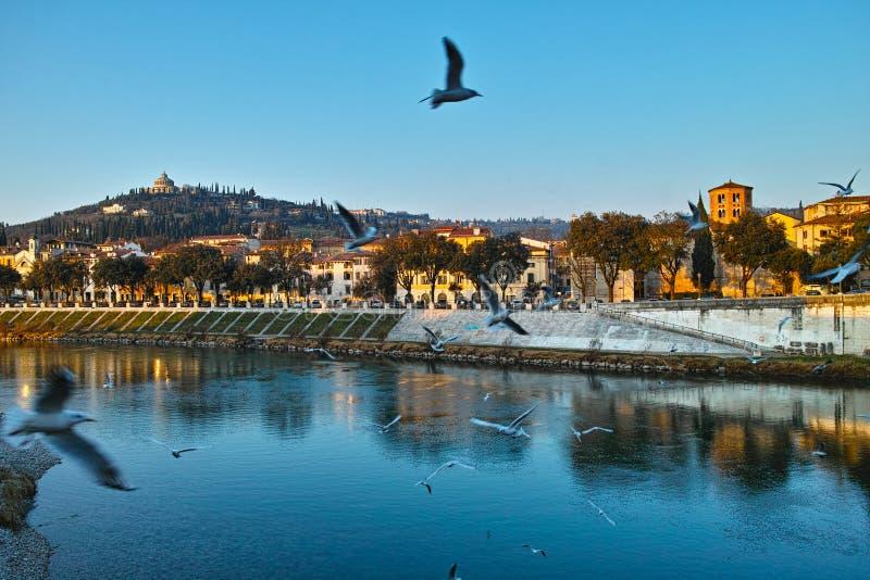 Italiaanse stad bij rivierlandschap door zonsondergang stock afbeelding