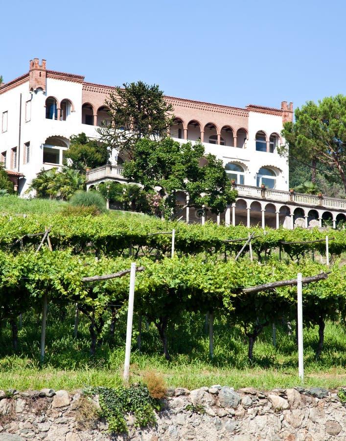Italian charming villa in vineyard royalty free stock photos