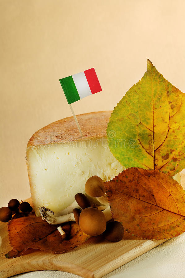 Italian cheese royalty free stock photo