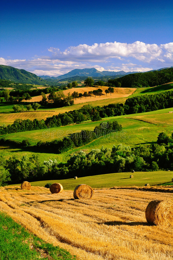 Download Italian countryside stock image. Image of landscape, fields - 5782161