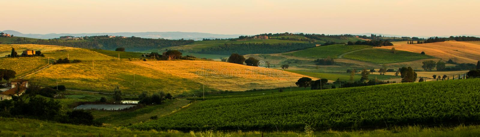 Italian Countryside IV. The countryside outside Montepulciano bathed in the morning light stock images