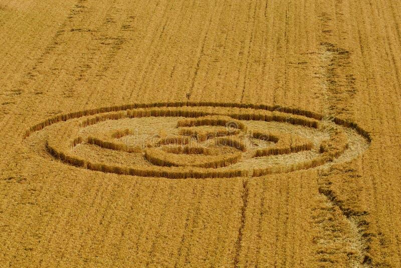 Download Italian crop circle stock image. Image of pattern, texture - 12163207