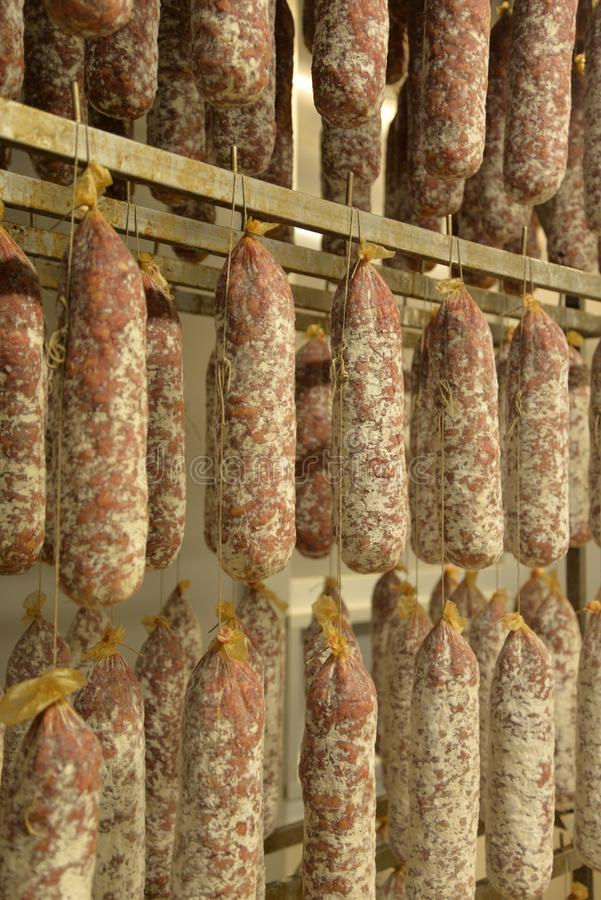 Italian drying salami sausages. Hanging, drying salami sausages in a food factory. Gourmet Italian meat specialty royalty free stock photography