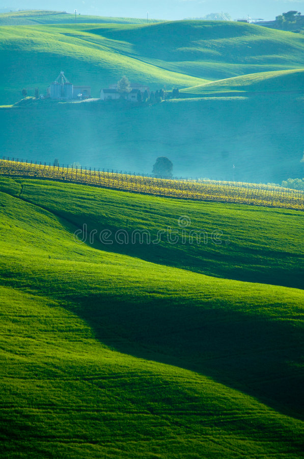 Italian fields stock photo