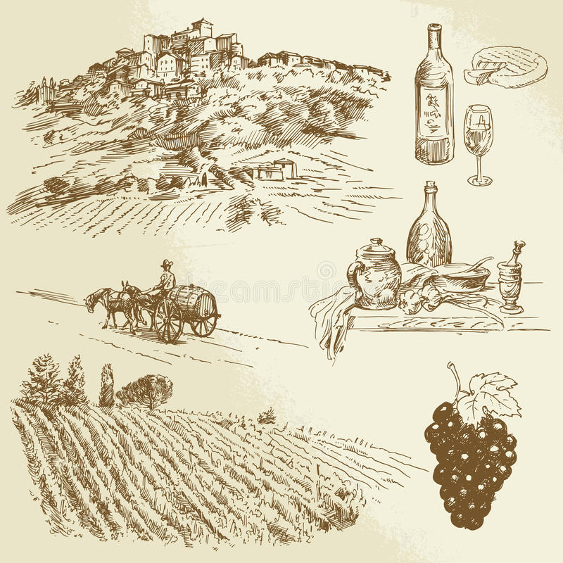 Italian landscape, vineyard. Hand drawn illustration vector illustration