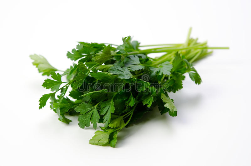 Download Italian Parsley stock photo. Image of healthy, space - 24129450
