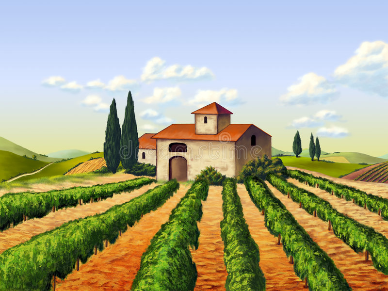 Italian vineyard. Vineyard in Tuscany, Italy. Original digital illustration stock illustration