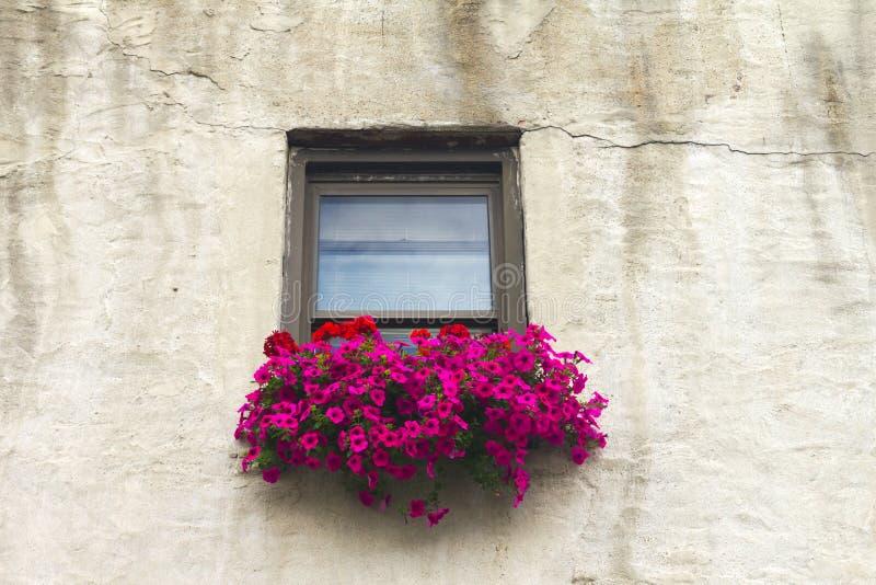 Italian Windowsill With Colorful Flowers Stock Photo