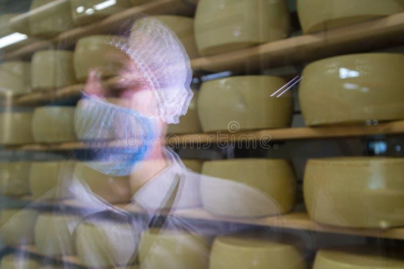 Italien, Emilia Romagna, traditionelle Käsefabrik, in der Parmesankäseparmesankäse produziert wird lizenzfreie stockbilder