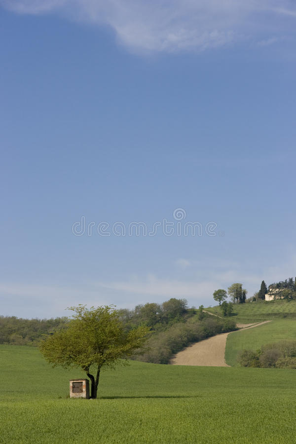 Italien, Toskana lizenzfreie stockfotografie