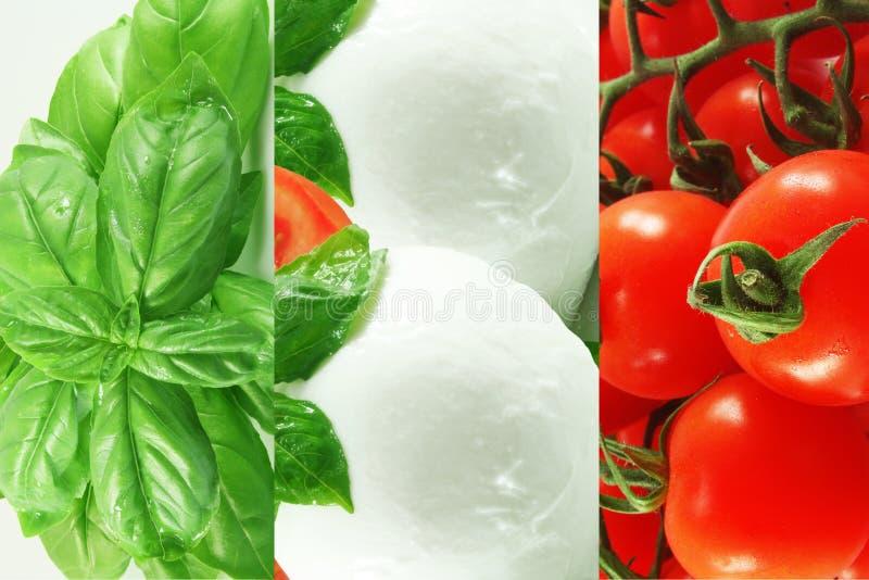 Tomat, Mozzarella och basilika royaltyfri foto
