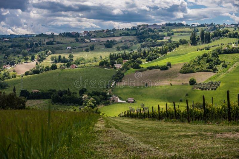 Italienische grüne Landschaft stockfotos