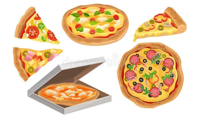 Italienische Pizza Vector Illustrated Set Farbenfrohes Restaurant Geschmackvoll isolierte Ernährung vektor abbildung
