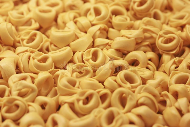 Italienischer frischer Teigwaren Tortellini stockfotografie
