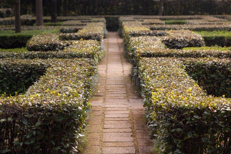Italienischer Garten lizenzfreie stockbilder