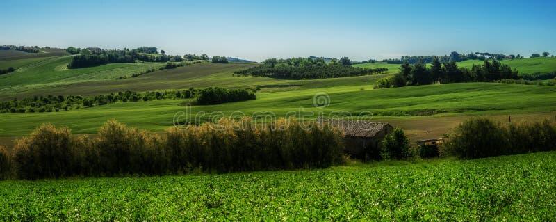 Italienisches Grün fängt Landschaft auf lizenzfreie stockfotos