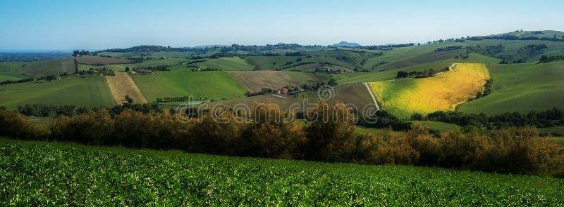 Italienisches Grün fängt Landschaft auf stockfoto