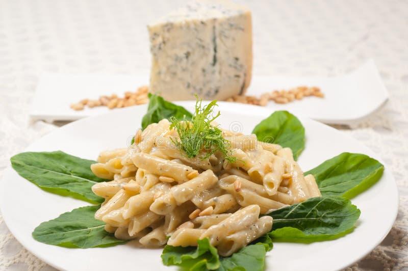 Italiensk pastapenne gorgonzola och sörjer tokigt royaltyfri fotografi